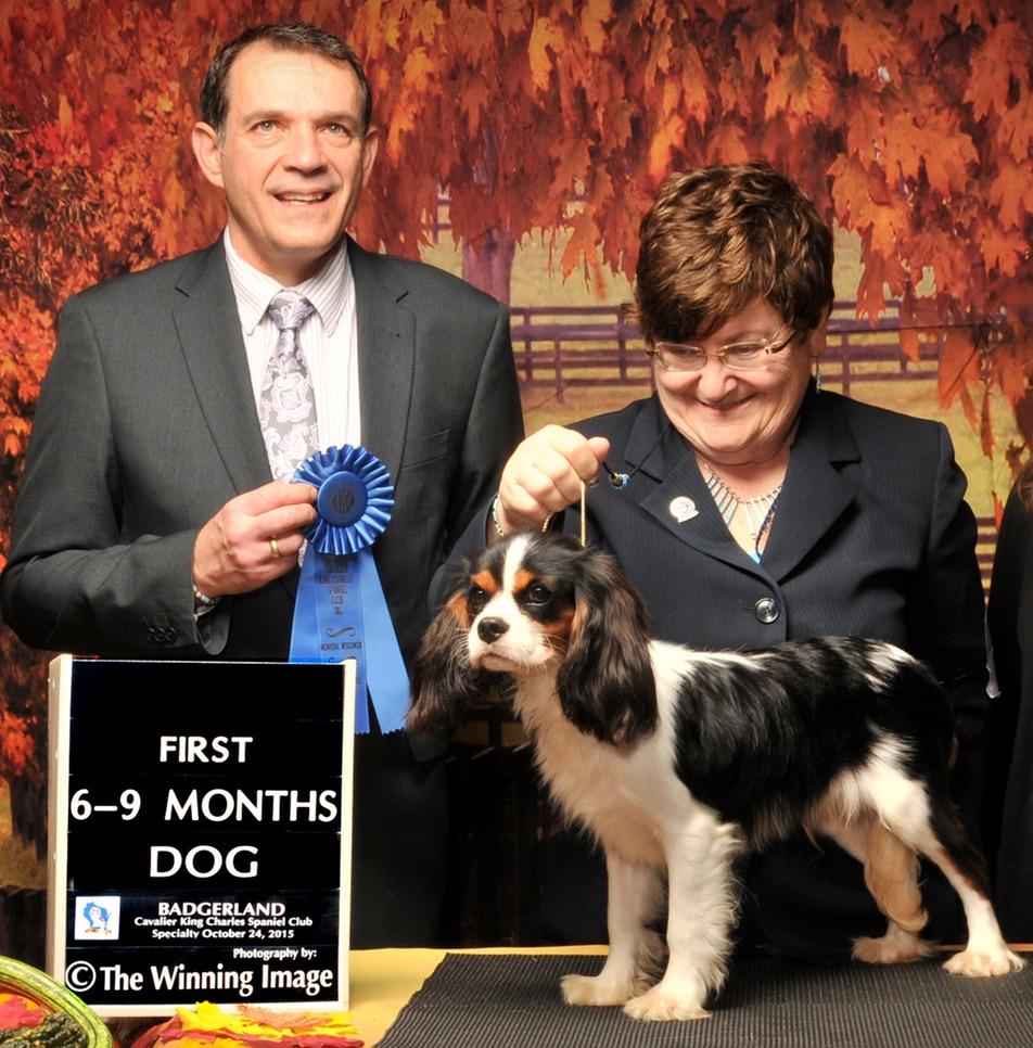 Jack Onofrio Dog Show Winners